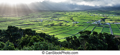 Farm fields in the Terceira island in Azores against sun -...