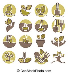 Tree planting and growing process infographic vector icons