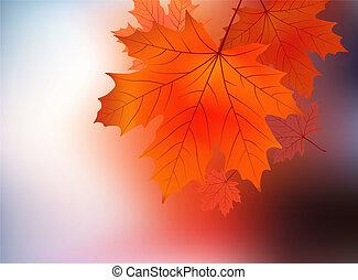 Maple leaf against sunrise.
