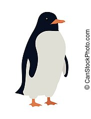 Penguins Isolated. Aquatic, Flightless Bird - Penguins...