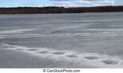 Spring melting ice of the lake to a forest on the coast