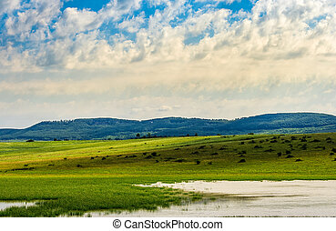 lake in rural area on a summer day - lake near the field in...