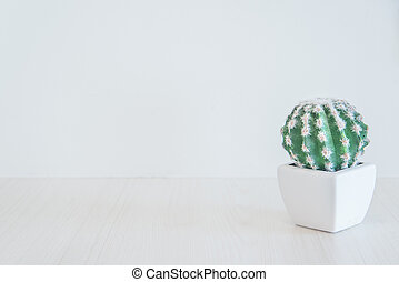 clean cactus tree as background - green cactus tree on white...
