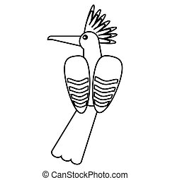 hoopoe bird exotic thin line vector illustration eps 10