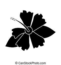 hibiscus flower exotic pictogram
