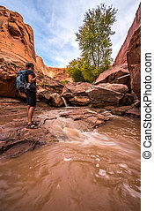 Backpacker crossing small stream Coyote Gulch Grand...