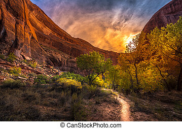 Sunset over Coyote Gulch Escalante Fall Colors Utah USA