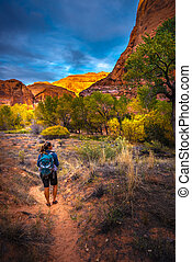 Hiker in Coyote Gulch Escalante Fall Colors - Hiker on a...