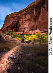 Coyote Gulch Hiking Trail Fall Colors - Coyote Gulch Fall...