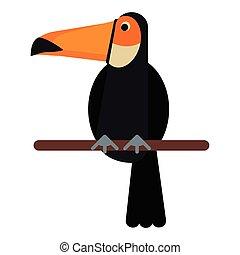 toucan bird exotic fauna vector illustration eps 10