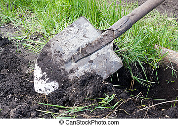 Shovel digging. Treatment of the soil.