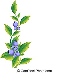 berries - illustartion of berries