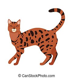 Bengal Cat Vector Flat Design Illustration - Bengal cat...