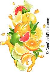 Citrus Fruits Juice  Drops Colorful Composition