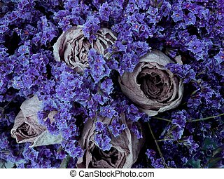 Closeup of beautiful dry flowers vintage background. Bouquet of dried violet flowers and roses.