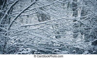 Woodland Scene In Heavy Snowfall - View through lots of...