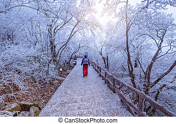Young woman on the walkway in Huangshan National park. Park...