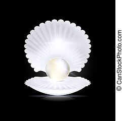 dark, white pearl and shell - black background with the...