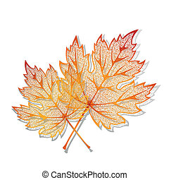Autumn background   - Autumn  background with maple leaves