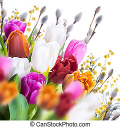 Multi-colored tulips with willow and butterflies.