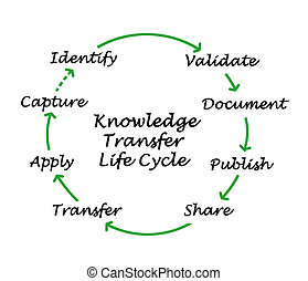 Knowledge Transfer Life Cycle