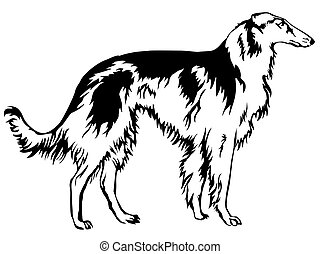 Decoratie Russian wolfhound vector illustration.eps -...