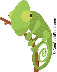 Chameleon icon, cartoon style - Chameleon icon. Cartoon...