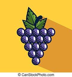 grapes fresh fruit handmade drawn vector illustration design