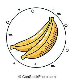 banana fresh fruit handmade drawn vector illustration design
