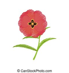 drawing buttercup flower bloom spring vector illustration...