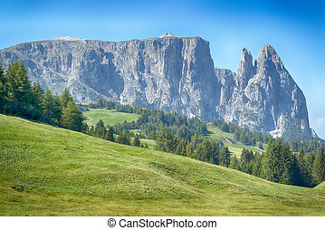 Alpe di Siusi in summer season - beautiful view oh the...