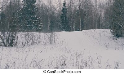Somebody on snowmobile riding - Winter forest in a...