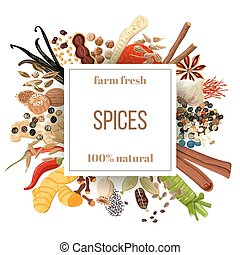 Culinary spices big set under squire emblem. Bunch of...