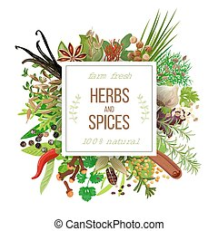 culiherb - Culinary herbs and spices big set under squire...