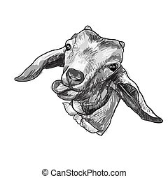 Drawing goat head sticking tongue out isolated on white...