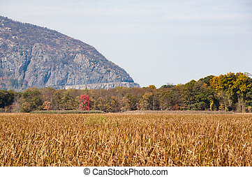 Storm King Mountain - The road on Storm King Mountain is...