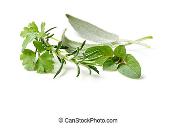 Fresh-picked Herbs - Fresh-picked herbs isolated on white...
