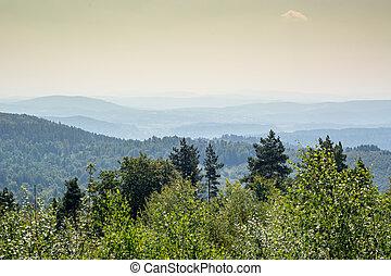 Bieszczady - Beautiful view of Bieszczady mountains in...