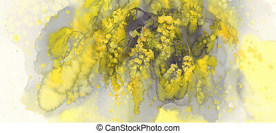 Mimosa flower watercolor yellow background. Spring bloom