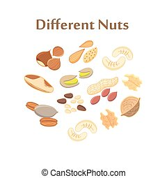 Set of different nuts on a white background