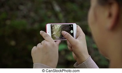 Person takes photo on mobile phone in forest