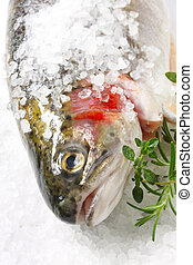 Salt-crusted Trout - Rainbow trout encrusted with sea salt,...