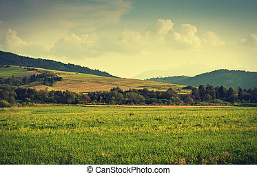 Green hills near Cerveny Klastor in Pieniny mountains,...