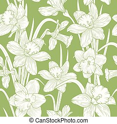 Narcissus daffodils sping flowers green pattern - Blooming...