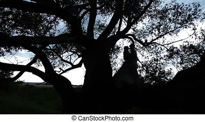 Silhouette of lovely couple on a tree embracing