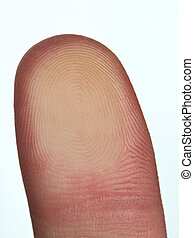 Biometric id identification with macro finger print isolated...