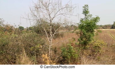 Area around Nagpur, India. Dry foothills with orchards...