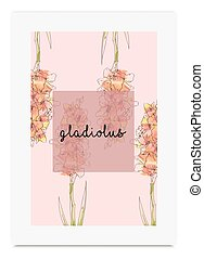 Gladiolus vector illustration hand drawn painted watercolor