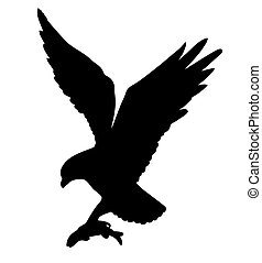 vector drawing of the ravenous bird on white background