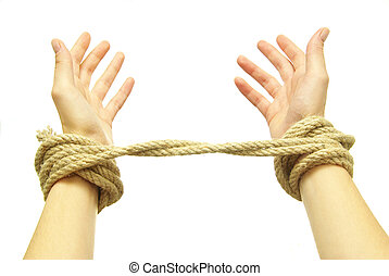 hands in rope - Tied hands isolated on a white background